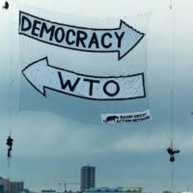 Wto Democracy